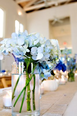 Christina (Nouveau Flowers) created such a sweet, intimate feel with the blue Hydrangea along the tables.